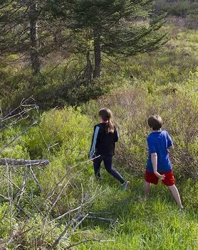 Hiking children in West Virginia forest