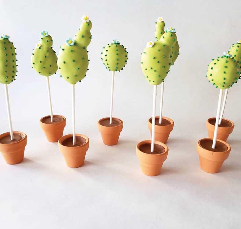 Cactus cake pops